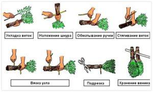 «Заготовка веников для бани: сроки и особенности» фото - zag venikov 4 300x180