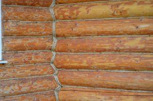 «Сруб бани своими руками: особенности постройки» фото - srub bani 5 300x199