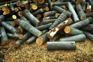 «Баня на дровах: особенности бани и выбор дров» фото - banya na drovah 10 300x203