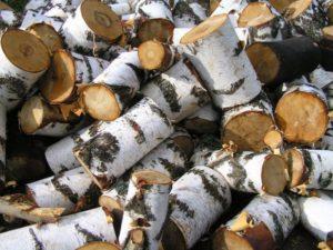 «Баня на дровах: особенности бани и выбор дров» фото - banya na drovah 6 300x225