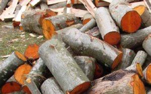 «Баня на дровах: особенности бани и выбор дров» фото - banya na drovah 9 300x187