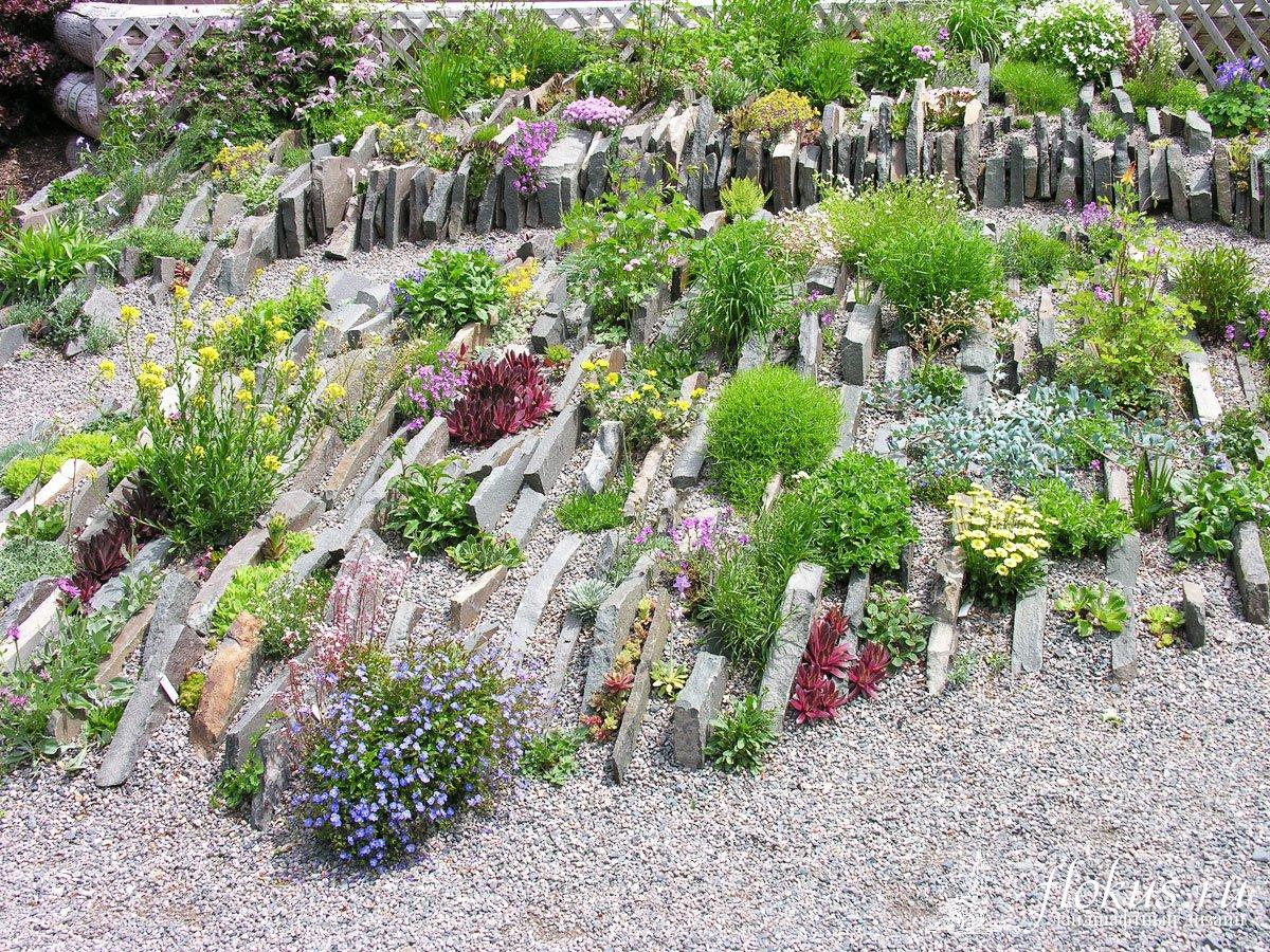 «Делаем альпинарий в саду своими руками» фото - alpinarij55