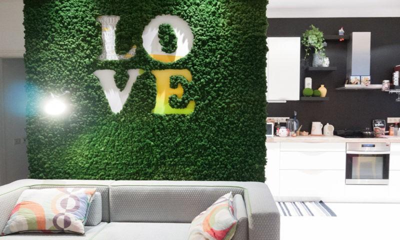 «Декоративный мох: разновидности, где применяется» фото - 14 3 800x480