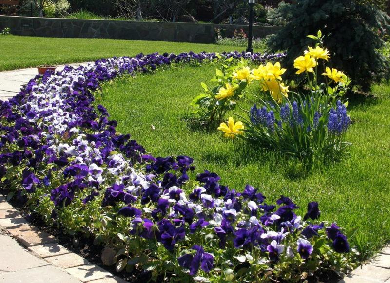 «Клумба для цветов своими руками» фото - 1526631305 666 vse vidy tsvetnikov spisok s foto rehouz 800x581