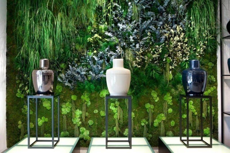 «Декоративный мох: разновидности, где применяется» фото - 17 1 800x533