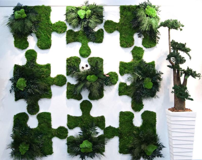 «Декоративный мох: разновидности, где применяется» фото - 20 1 800x634