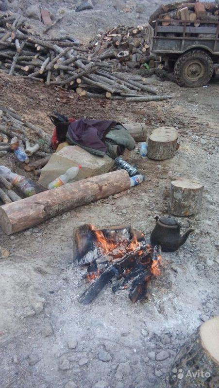 «Дрова для шашлыка и бани» фото - 2308096553 451x800
