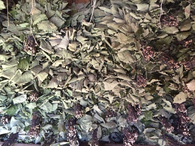 «Король бани - дубовый веник» фото - 2792057395 800x600