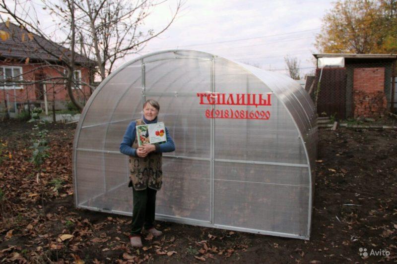 «Теплица для огорода небольшая» фото - 3938252996 800x533