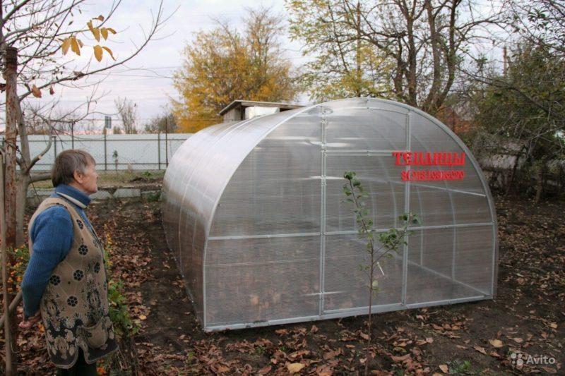 «Теплица для огорода небольшая» фото - 3938253029 800x533