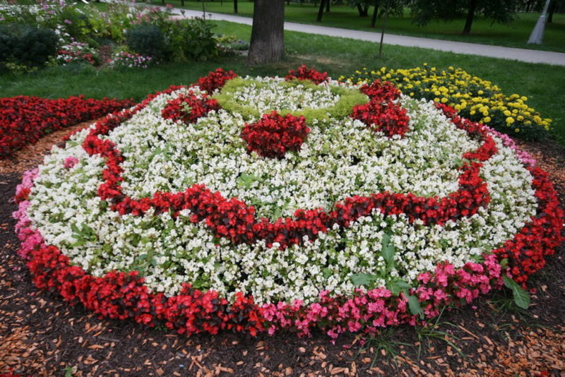 «Как правильно сделать клумбу для цветов» фото - 4 1 800x534