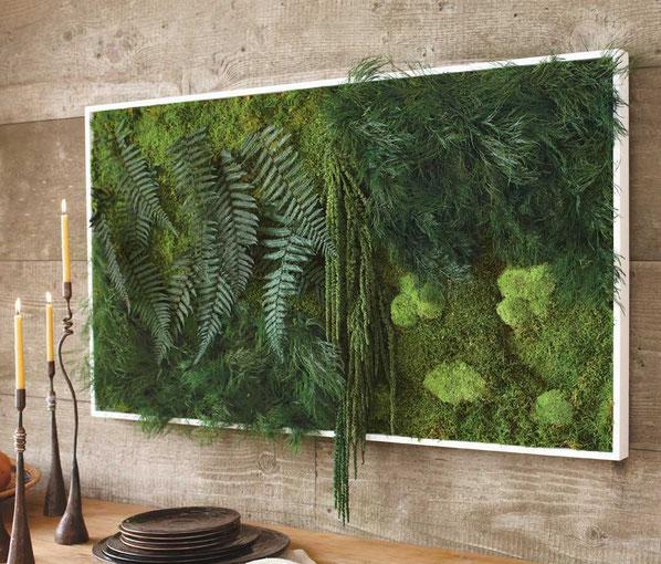 «Декоративный мох: разновидности, где применяется» фото - 7 1