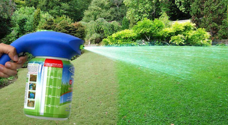 «Как правильно сделать газон на дачном и садовом участке» фото - 8677 1had 800x440