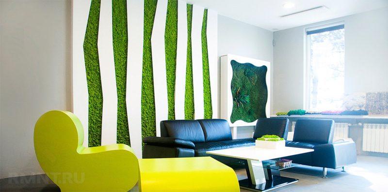 «Декоративный мох: разновидности, где применяется» фото - 9 2 800x397
