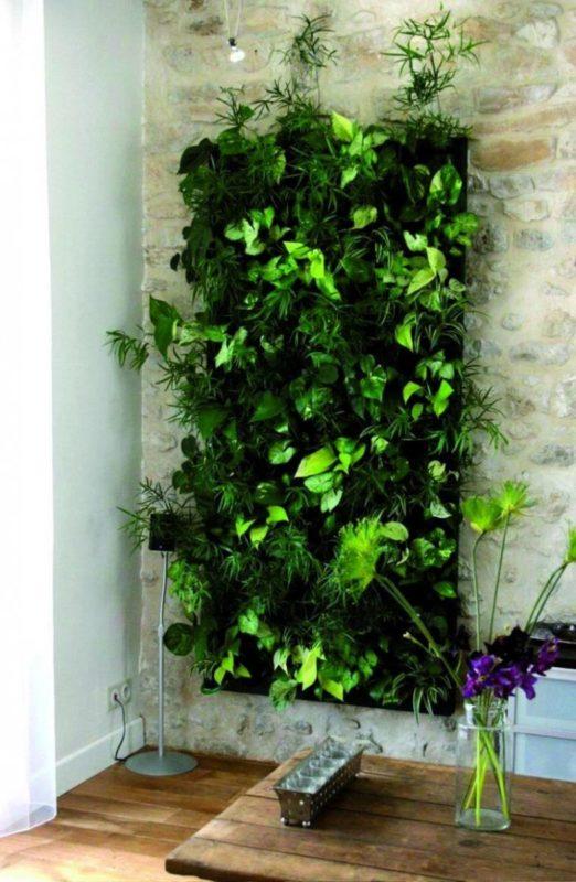 «Вертикальное озеленение на дачном участке» фото - Vertikalnoe ozelenenie v interere 10 522x800