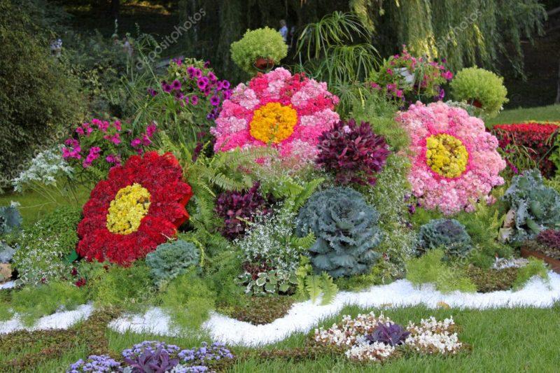 «Как правильно сделать клумбу для цветов» фото - depositphotos 6639498 stock photo blooming flowers in late summer 800x533