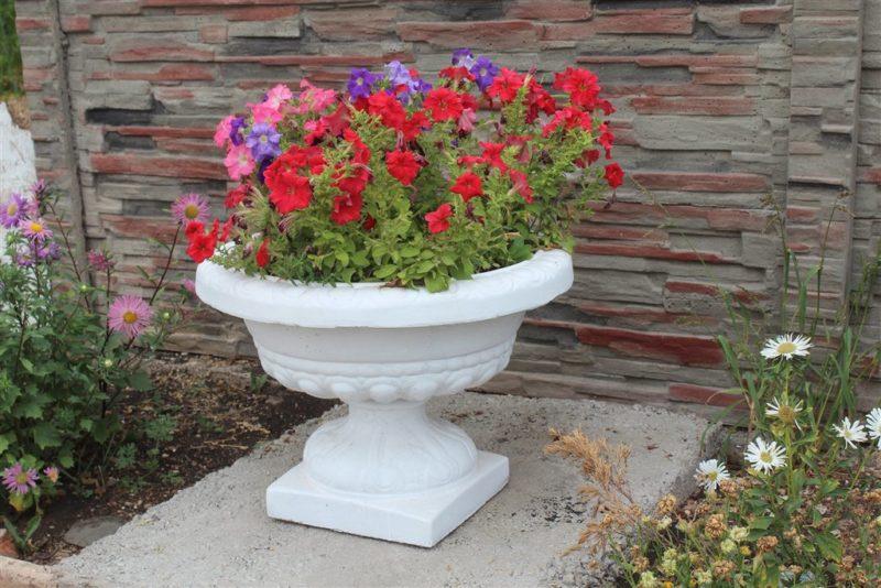 «Вазоны для цветов - пластиковые, бетонные, деревянные» фото - img 0532 800x534