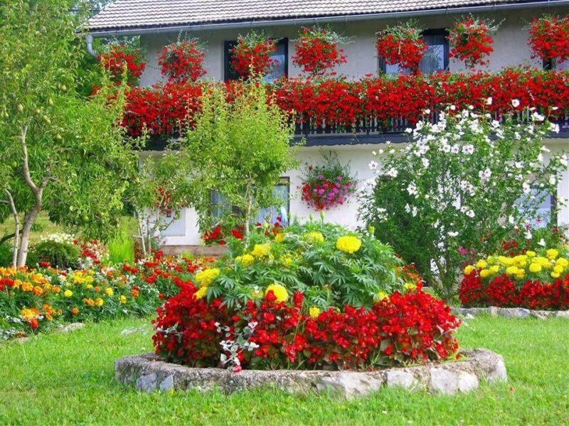 «Как правильно сделать клумбу для цветов» фото - oformlenie palisadnika 45 foto11 800x600