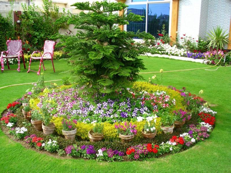 «Как правильно сделать клумбу для цветов» фото - osnovnye principa vybora cvetov dlya klumby 1 800x600