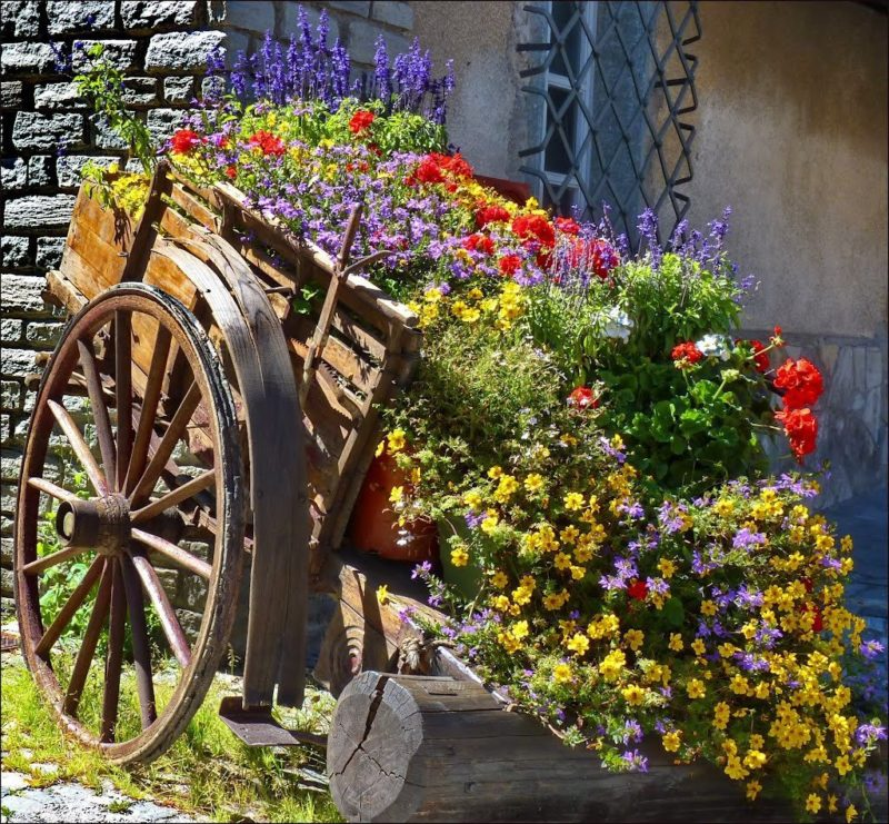«Как правильно сделать клумбу для цветов» фото - s1200 4 800x741