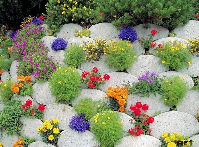 «Как правильно сделать клумбу для цветов» фото - s1200 5