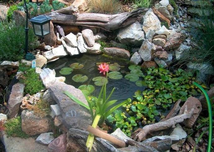 «Как сделать пруд на даче из старой ванны своими руками» фото - 3 10