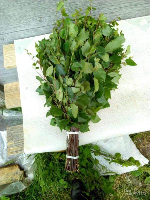 «Веники для бани из дуба и березы» фото - 4556735602 600x800