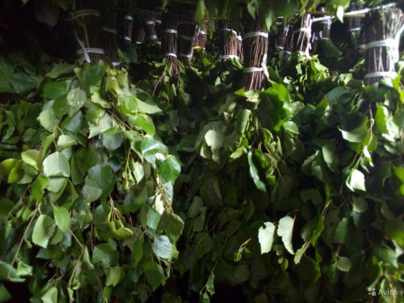 «Веники для бани из дуба и березы» фото - 4556744890 800x600