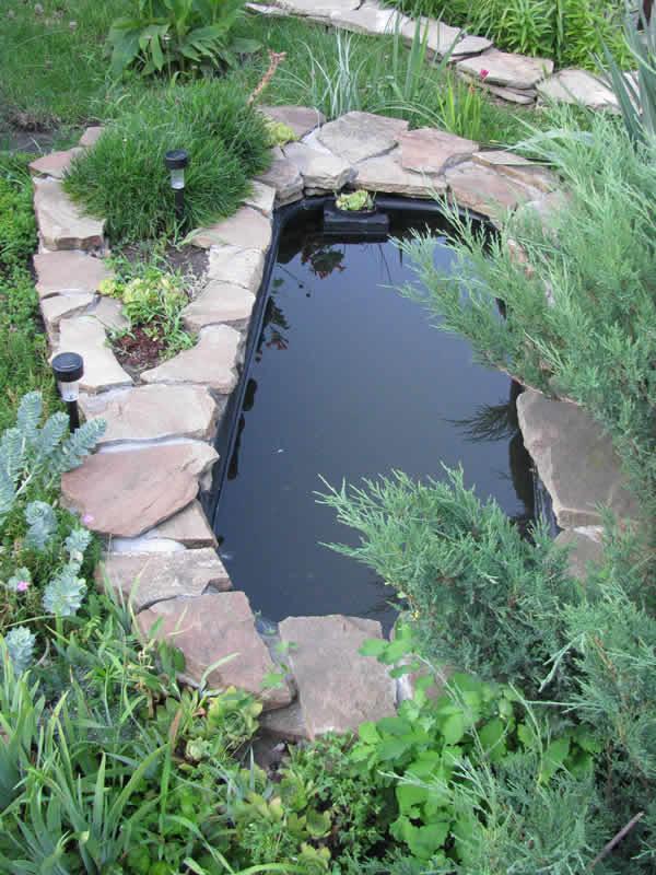 «Как сделать пруд на даче из старой ванны своими руками» фото - 5 9 600x800