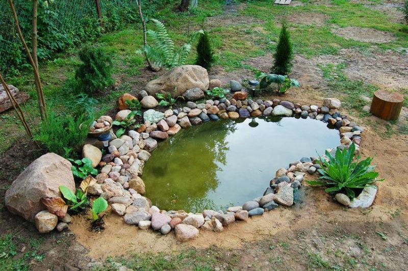«Как сделать пруд на даче из старой ванны своими руками» фото - 8 9 800x532
