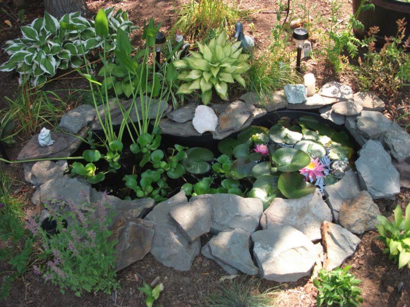 «Как сделать пруд на даче из старой ванны своими руками» фото - Cute Preformed Pond 800x600