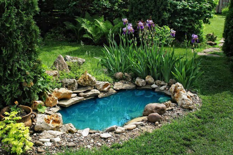 «Как сделать пруд на даче из старой ванны своими руками» фото - s1200 4 800x532
