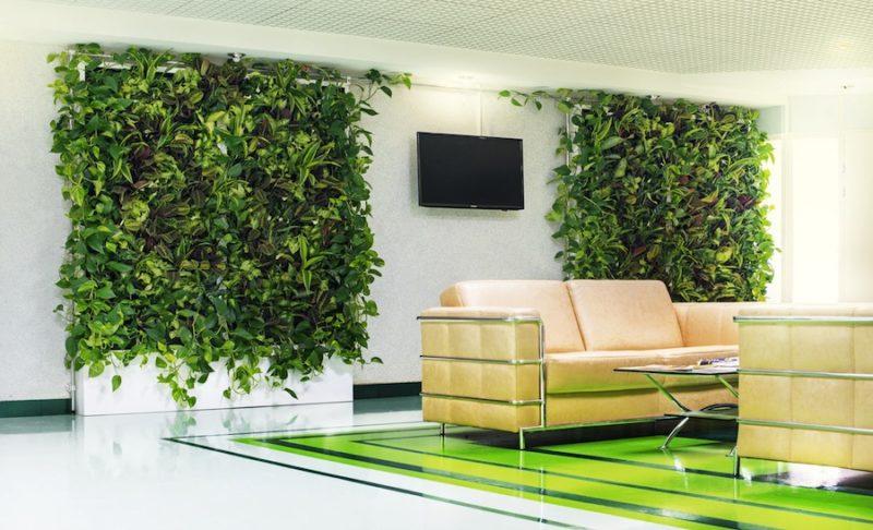 «Вертикальное озеленение в квартире своими руками» фото - 10 2 800x486