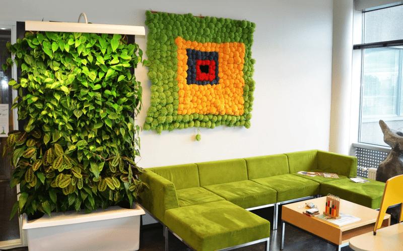 «Вертикальное озеленение в квартире своими руками» фото - 10 800x500