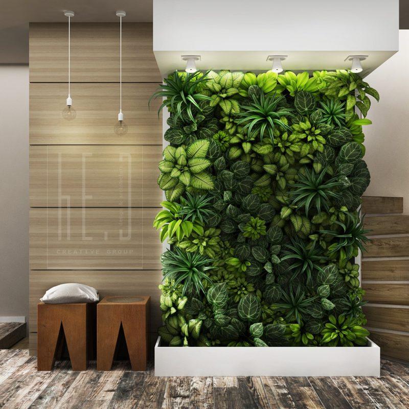 «Вертикальное озеленение в квартире своими руками» фото - 11 800x800