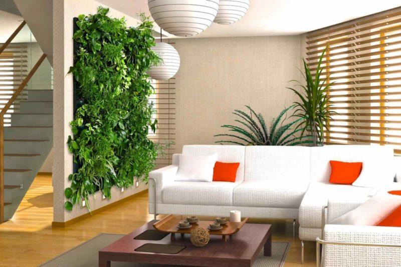 «Вертикальное озеленение в квартире своими руками» фото - 17 800x534