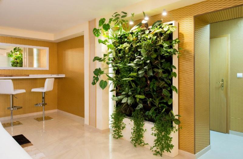 «Вертикальное озеленение в квартире своими руками» фото - 18 800x524