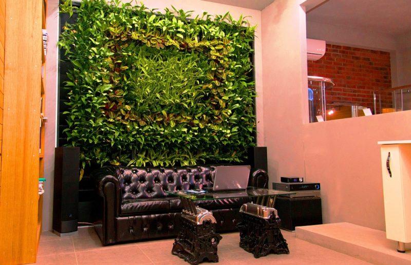«Вертикальное озеленение в квартире своими руками» фото - 19 800x516