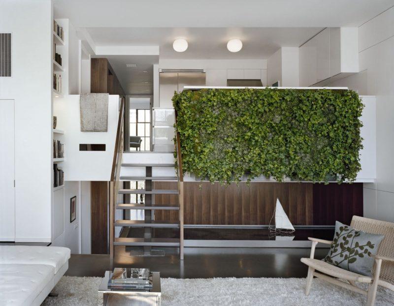 «Вертикальное озеленение в квартире своими руками» фото - 19 800x622
