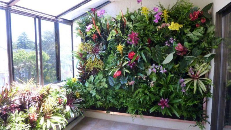 «Вертикальное озеленение в квартире своими руками» фото - 2 2 800x450
