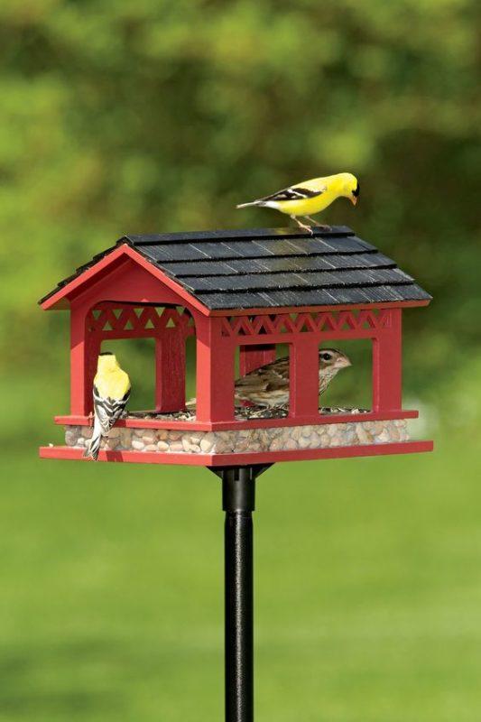 «Как сделать кормушку для птиц своими руками» фото - 2 4 533x800