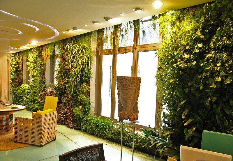 «Вертикальное озеленение в квартире своими руками» фото - 20 800x553