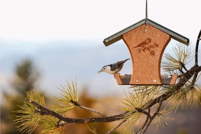 «Как сделать кормушку для птиц своими руками» фото - 3 4 800x532