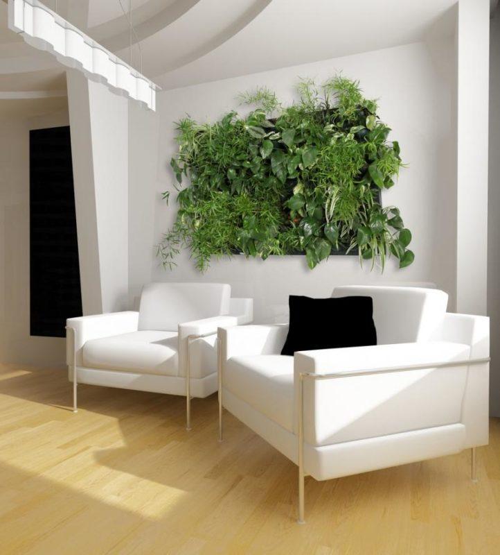 «Вертикальное озеленение в квартире своими руками» фото - 4 2 722x800