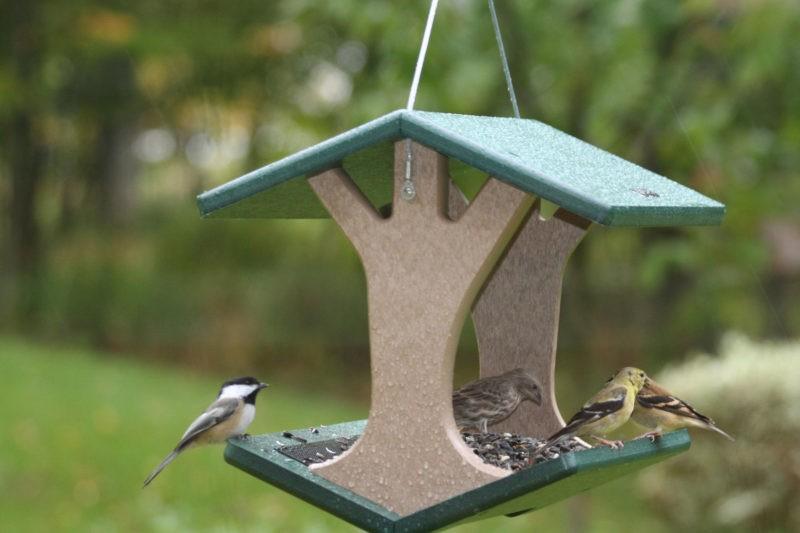 «Как сделать кормушку для птиц своими руками» фото - 4 3 800x533