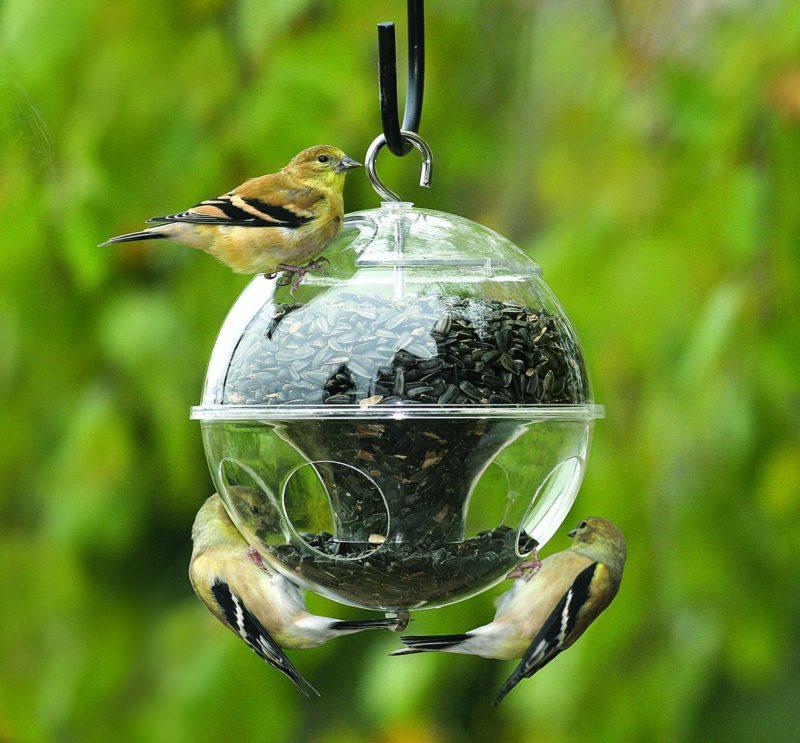 «Как сделать кормушку для птиц своими руками» фото - 4 4 800x743
