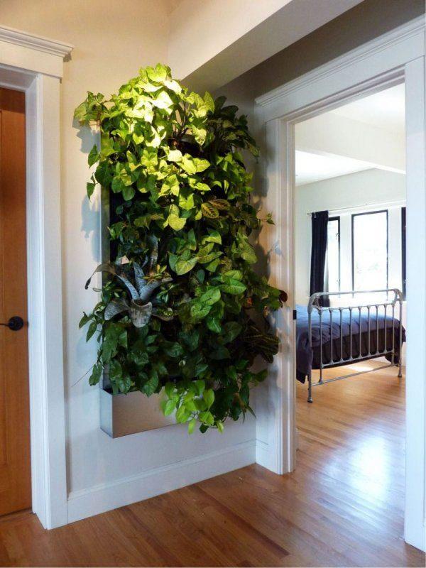 «Вертикальное озеленение в квартире своими руками» фото - 5 2 600x800