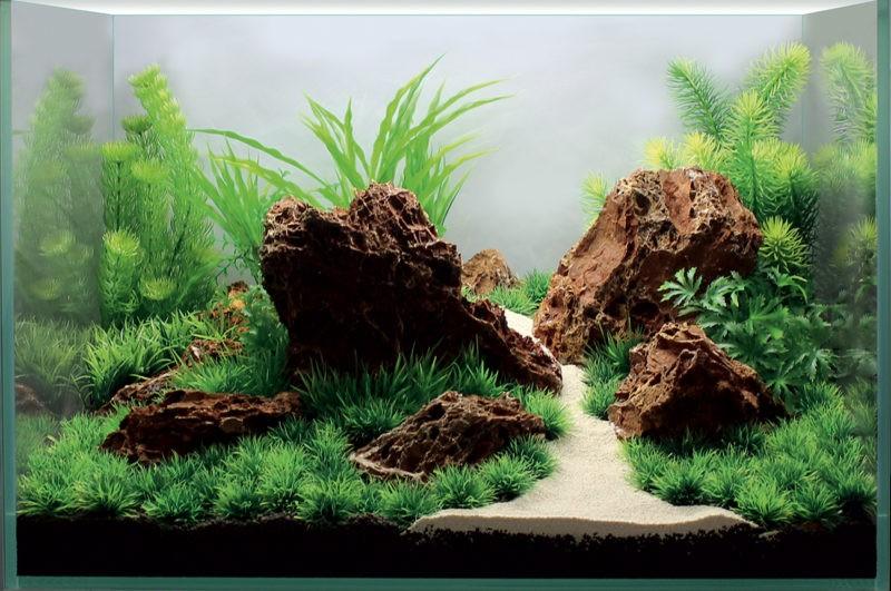 «Композиция из камней в аквариуме» фото - 5 800x531