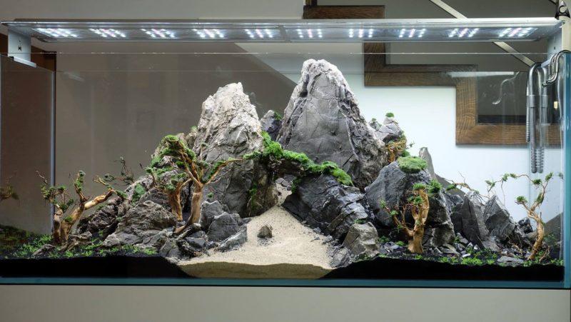 «Композиция из камней в аквариуме» фото - 7 800x451