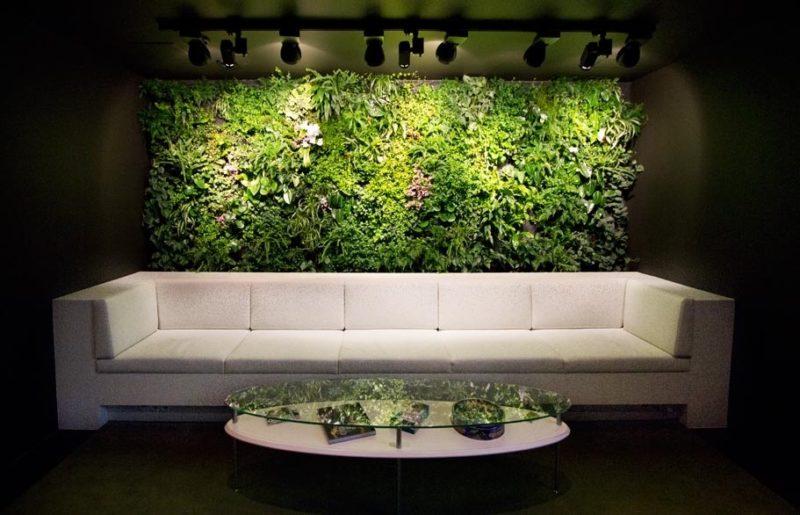 «Вертикальное озеленение в квартире своими руками» фото - 8 2 800x515